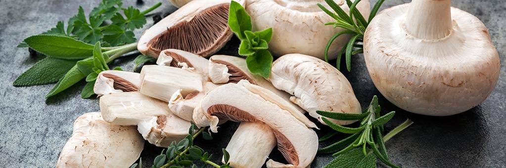Kerrignas Mushrooms